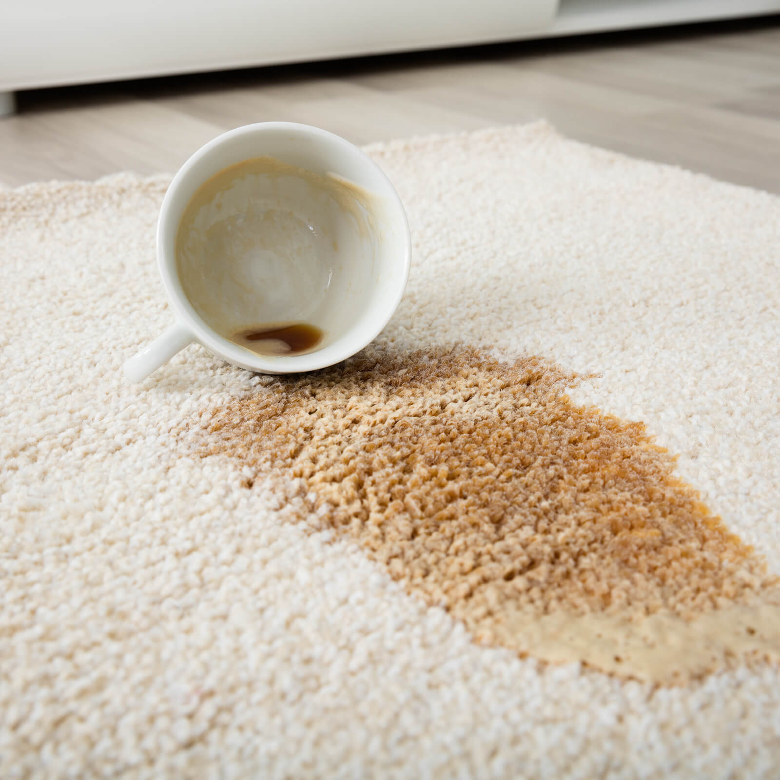Carpet cleaning tips | Noble Floors LLC